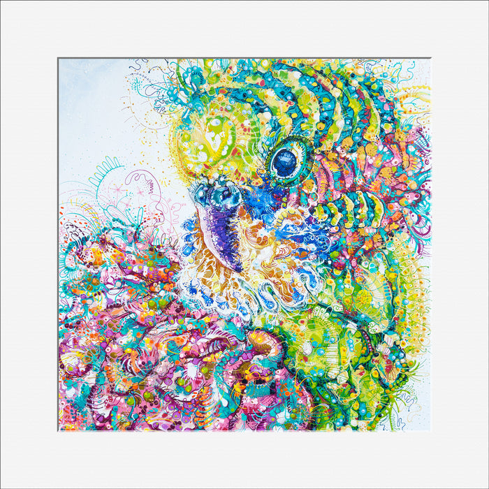 'Billy the Budgie' 30cm x 30cm OPEN-EDITION Print