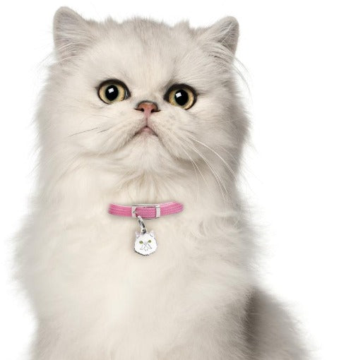 White Persian Cat Name Tag