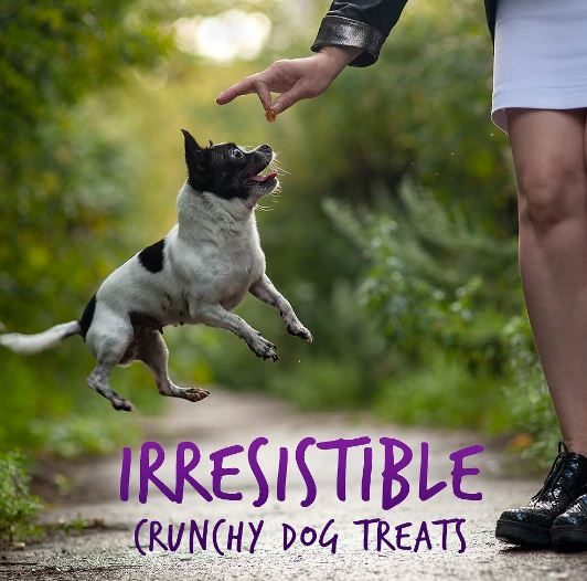 For yogurt lovers, Fruitables mixes Greek yogurt to pumpkin granola base and coconut to tempt your pup's taste buds.
