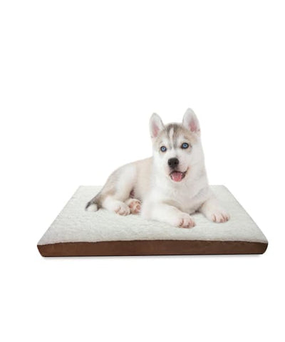 PawsnCollars Orthopedic Pet Bed For Dog/Cat.Your Loved one spends more than half its life sleeping.