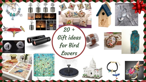 20+ Best Gift Ideas for Bird Lovers