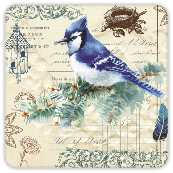 Blue Jay Collection