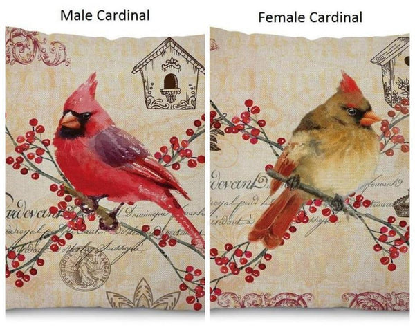 Cardinal Collection