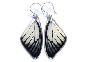 Red Spot Sawtooth Butterfly Wing Earrings