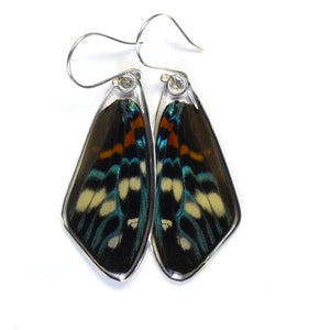 Day Flying Moth Butterfly Wing Earrings