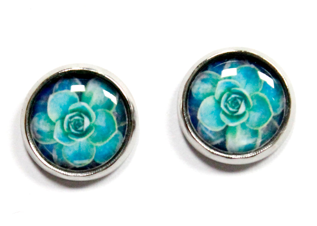 Succulent Round Stud Earrings