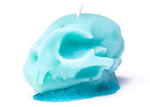 Cat Skull Candle in Turquoise