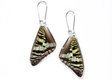 Green Sunset Moth Butterfly Wing Earrings