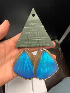 Blue Morpho Lower Butterfly Wing Earrings