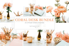 Coral Desk Bundle