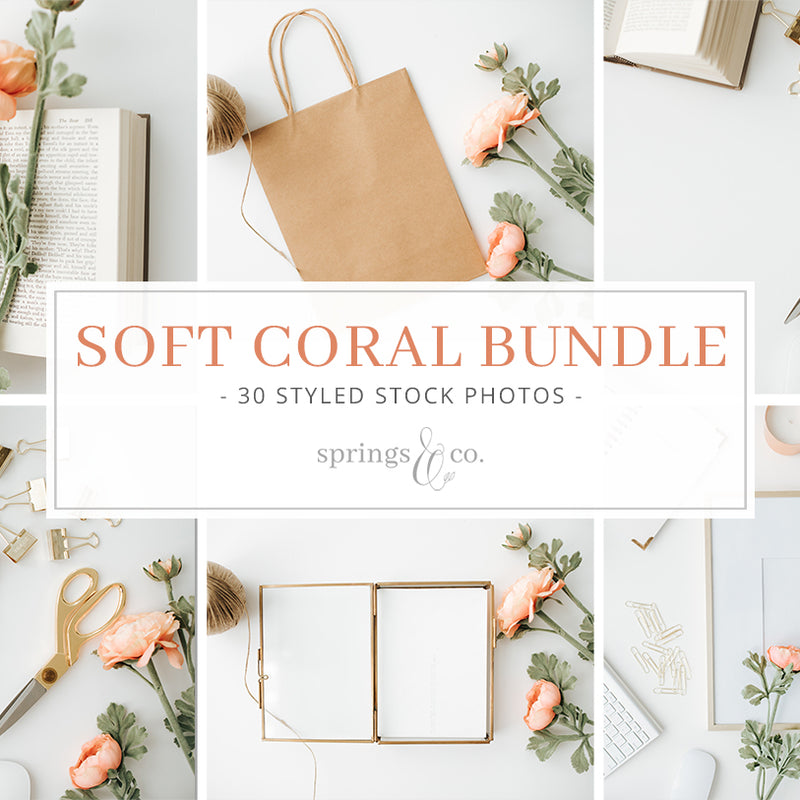 Soft Coral Bundle