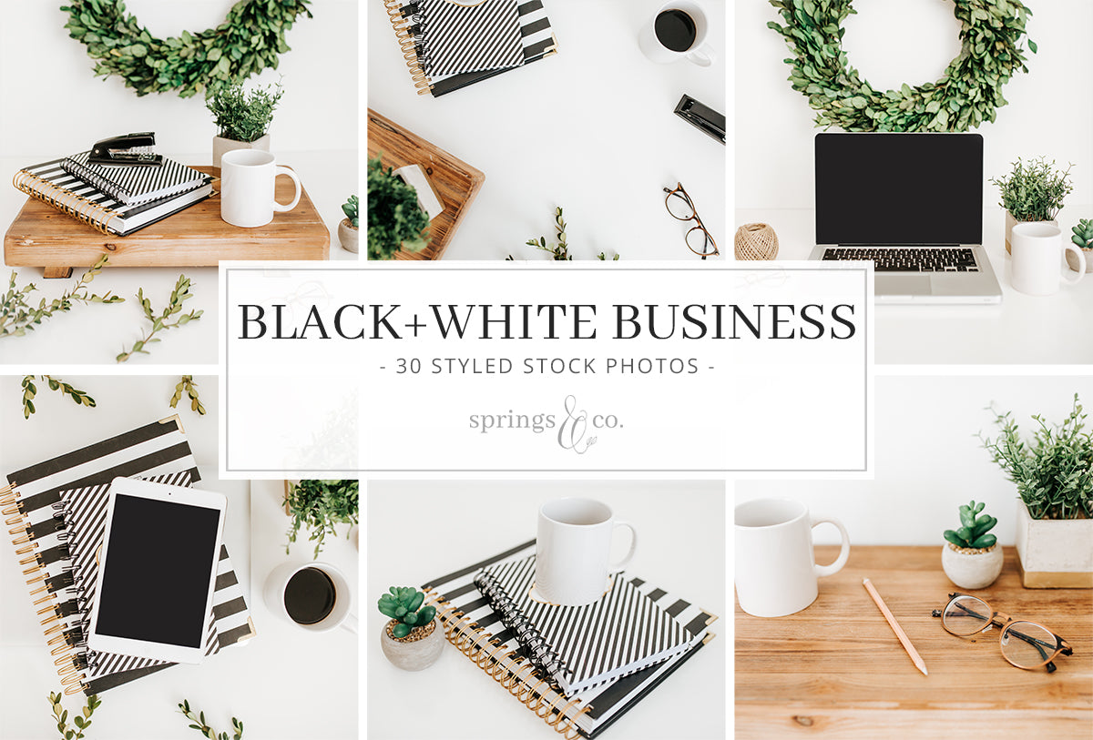 Black & White Business Bundle