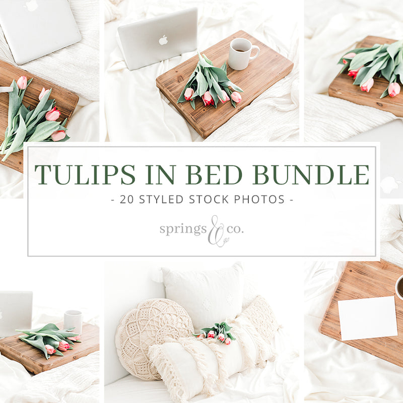 Tulips in Bed Bundle