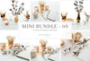 Mini Bundle 8