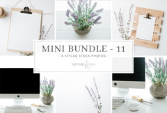 Mini Bundle 11