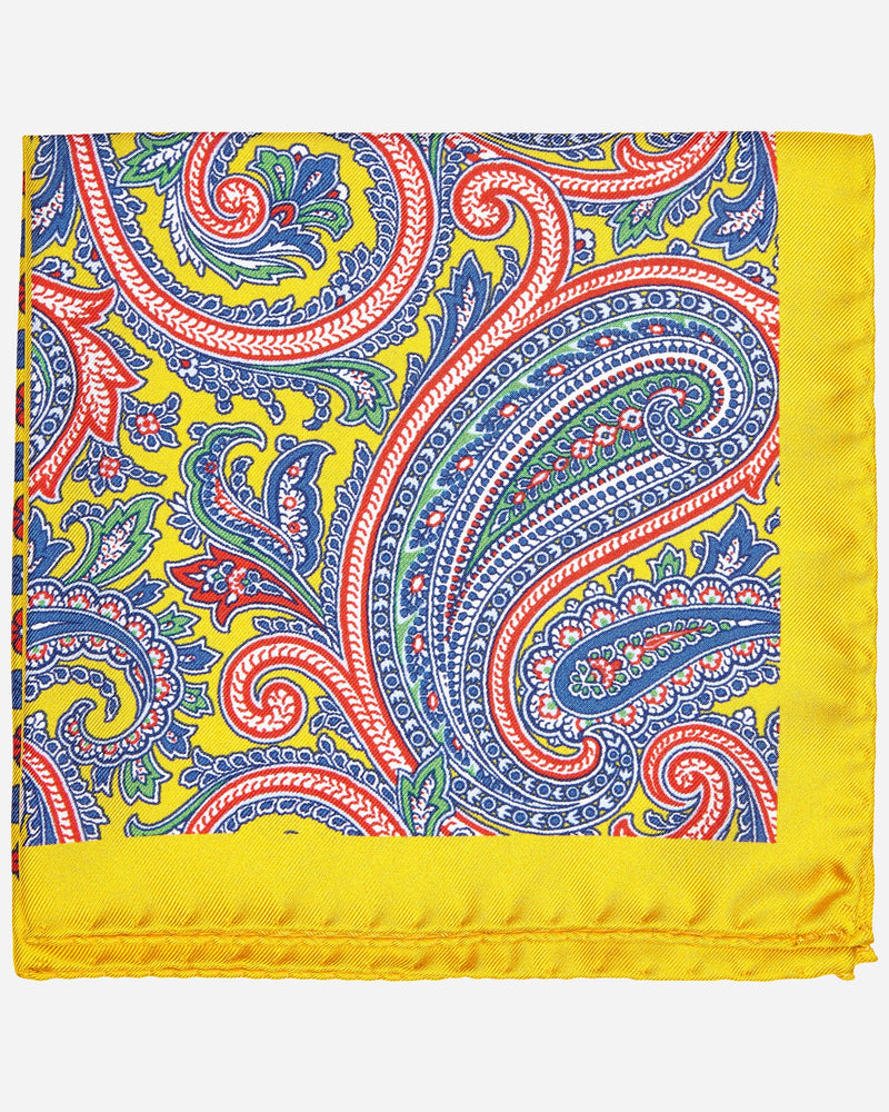 Paisley Pocket Square and Hanks