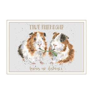 Friendship Card - True Friendship