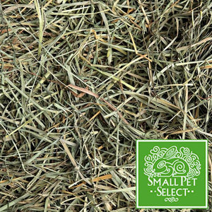 SPS Orchard Grass