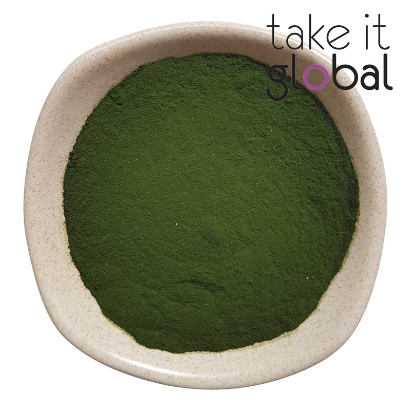 Chlorella Powder - Pure / Food Grade