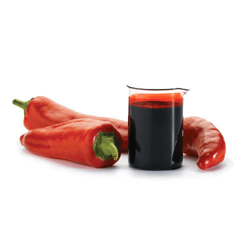 Capsicum / Chilli Essential Oil