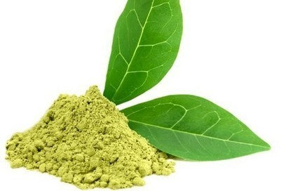Green Tea Extract (Liquid Form) - For Cosmetics