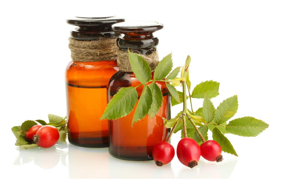 Rosehip / Rose Hip Oil Cold Press - Chile