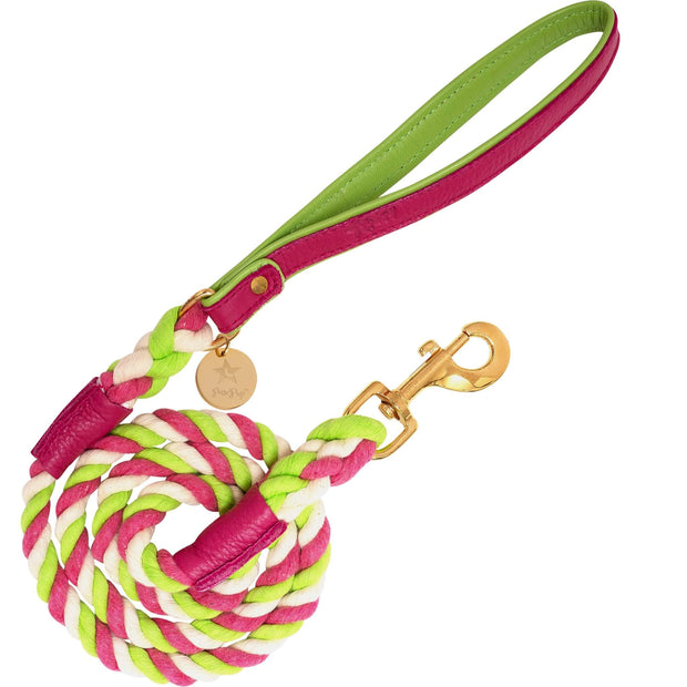 Candy Swirl-Italian Leather Dog Harness