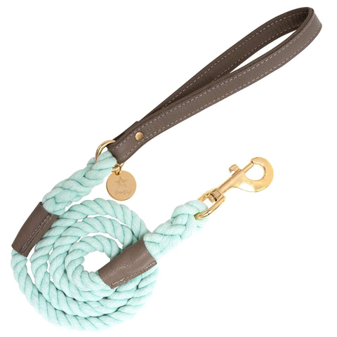 Desert Mint-Italian Leather Dog Harness