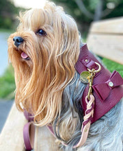 Luscious Bow-Italian Leather Dog Harness