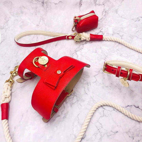 Melting Hearts-Italian Leather Dog Collar
