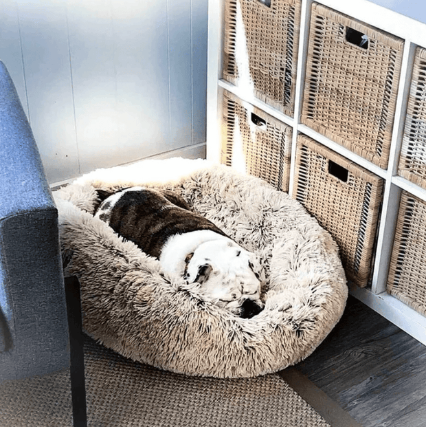The Plush Cozy™ Pet Bed