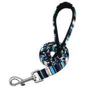 Personalized Striped Dog Collar & Leash