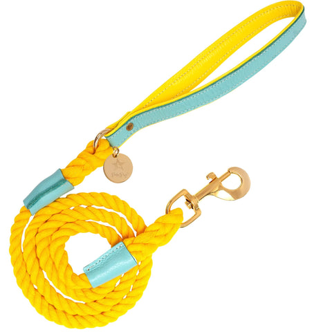 Sunshine Babe-Italian Leather Dog Harness