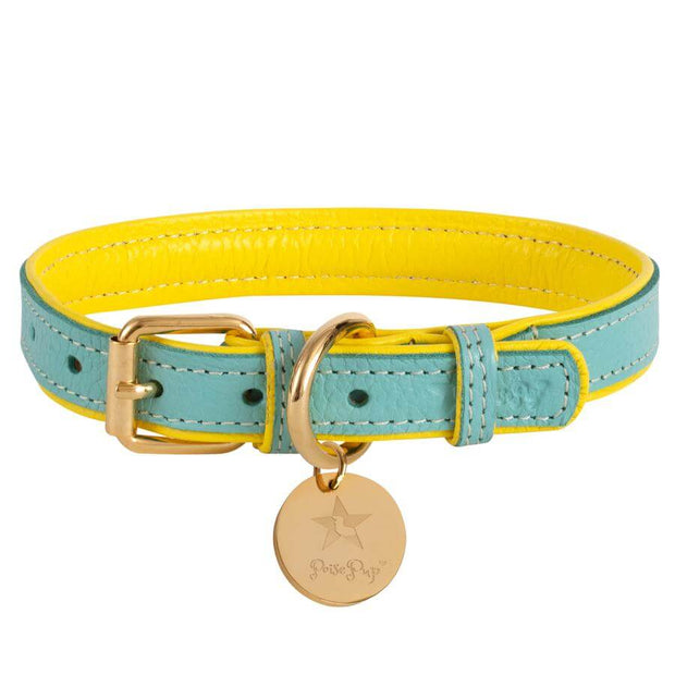 Sunshine Babe- Italian Leather Dog Collar