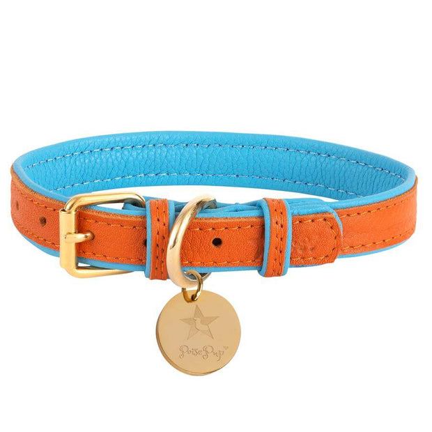 Vibrant Sunset- Italian Leather Dog Collar