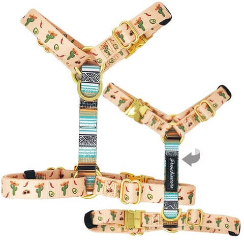 Cactus Frenchie Health Harness