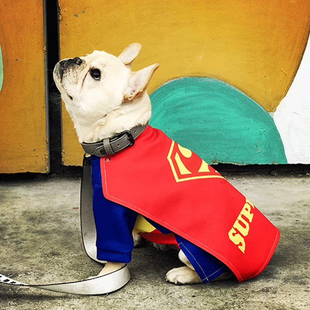 Super Hero Squad Pet Costumes