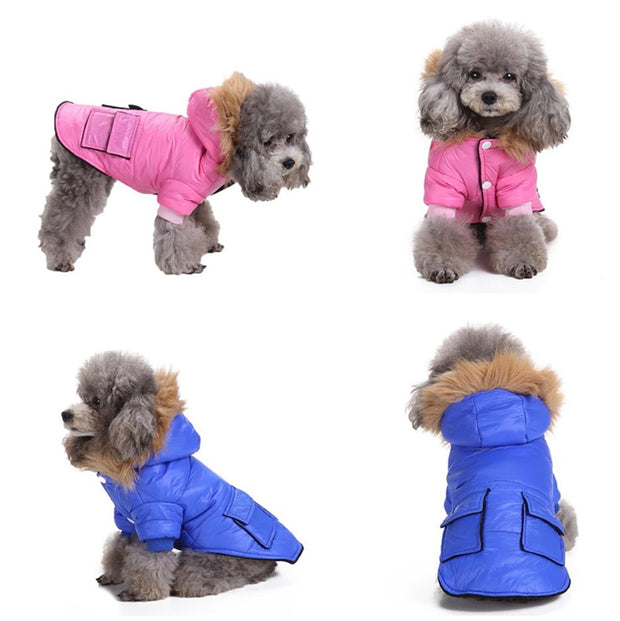 Jacket Coat Apparel With Pockets And Hat Pet clothing