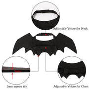 Halloween Pet Black Bat Wings