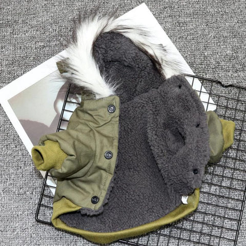 Dessert Green Winter Dog Parka Jacket