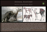 10 Animal Anatomy with Jonathan Kuo