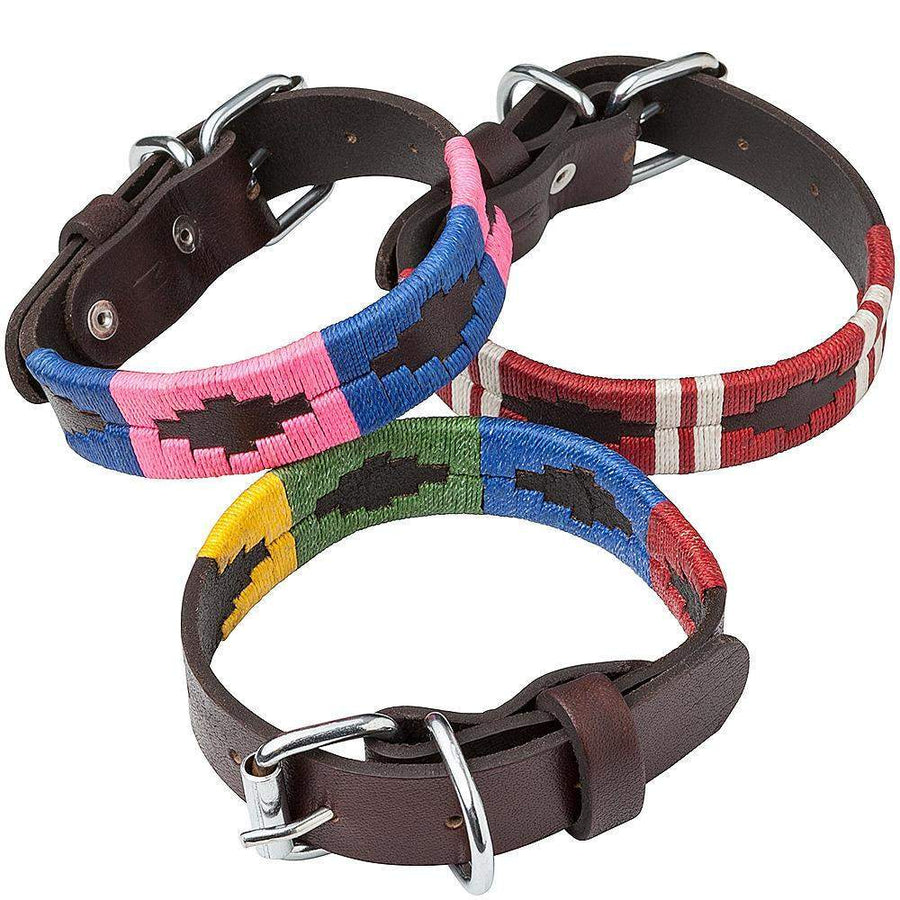 Georgie Paws Dog Collar