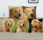 Cushion cover | Golden Retriever