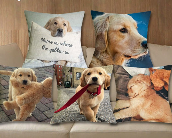 Cushion cover | Golden Retreiver