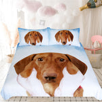 Bedding | Dachshund | Cute Brown