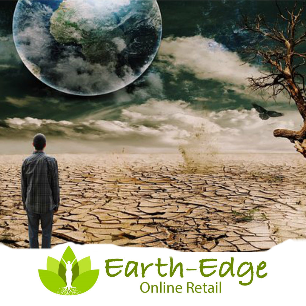 Earth-Edge Online Retail