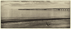 Panoramic Tanker Jetty Vintage Print.
