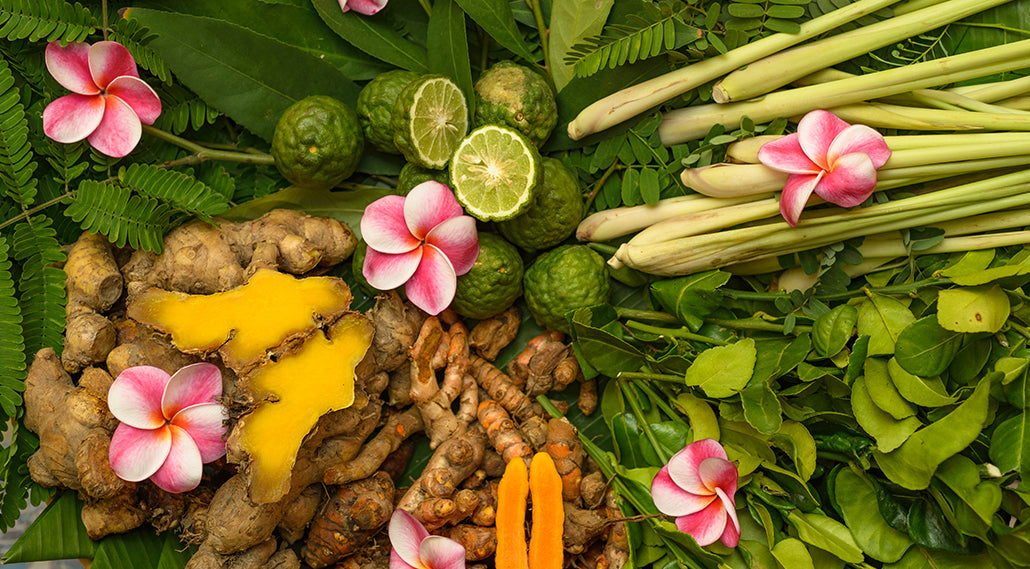 7 Herbs Used in Ayurveda that Destroy Colon & Other Cancers Fast