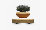Levitating & Floating Plant Pot