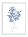 Framed Blue BVI Fern Leaves